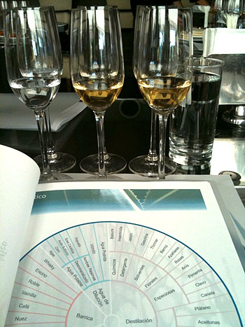 tequila-tasting-wheel-glasses