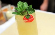 Tequila Julep Cocktail Recipe