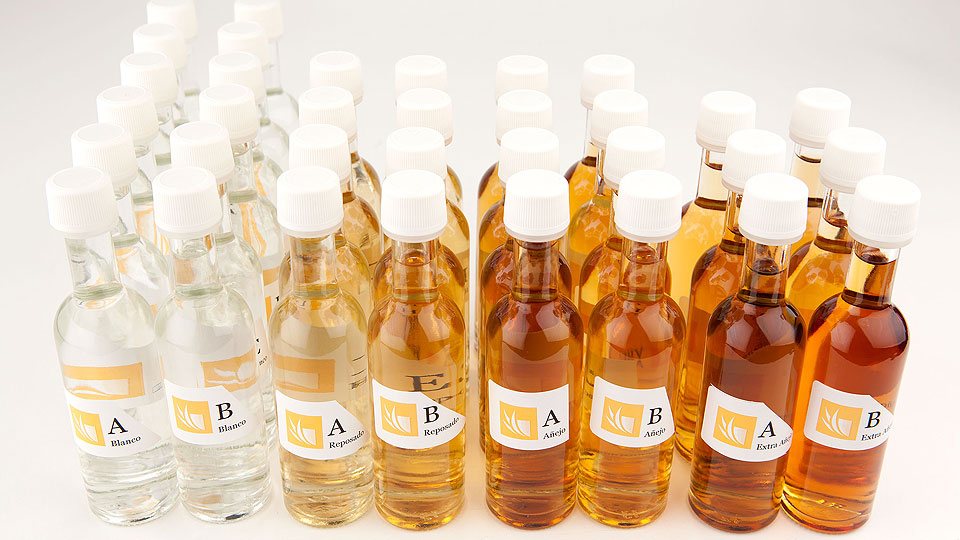 blind-judging-50-ml-bottles