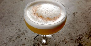 portrait-of-a-sauza-beer-cocktail