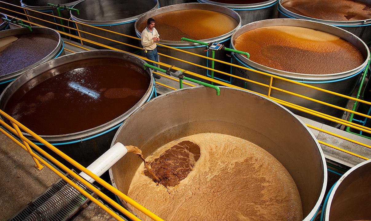 Depósitos de fermentación de la destilería de tequila La Cofradia